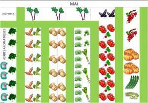 plan potager jardin