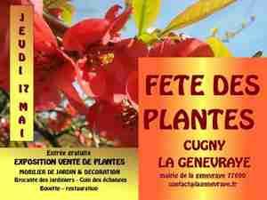 Fête des plantes à Cugny
