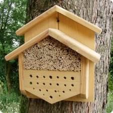 abri pour guepes et abeilles