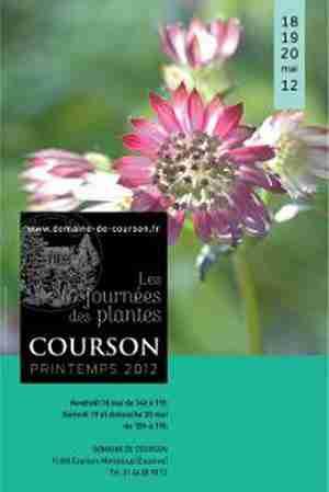 Journée des plantes de Courson