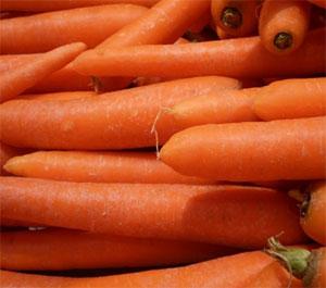 les carottes peuvent encore etre récoltées en octobre