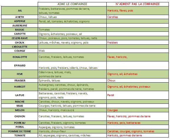 Calendrier des semis votre service for Calendrier plantation jardin potager