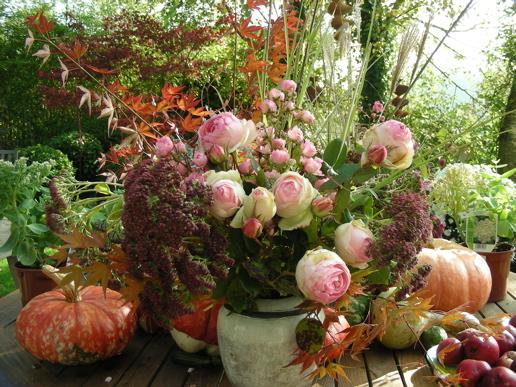 novembre potager conseil de jardinage blog hortik. Black Bedroom Furniture Sets. Home Design Ideas