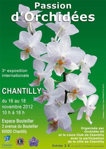 Exposition de chantilly