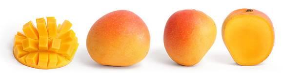 Faire pousser un manguier partir de la graine d 39 une mangue - Faire pousser une mangue ...