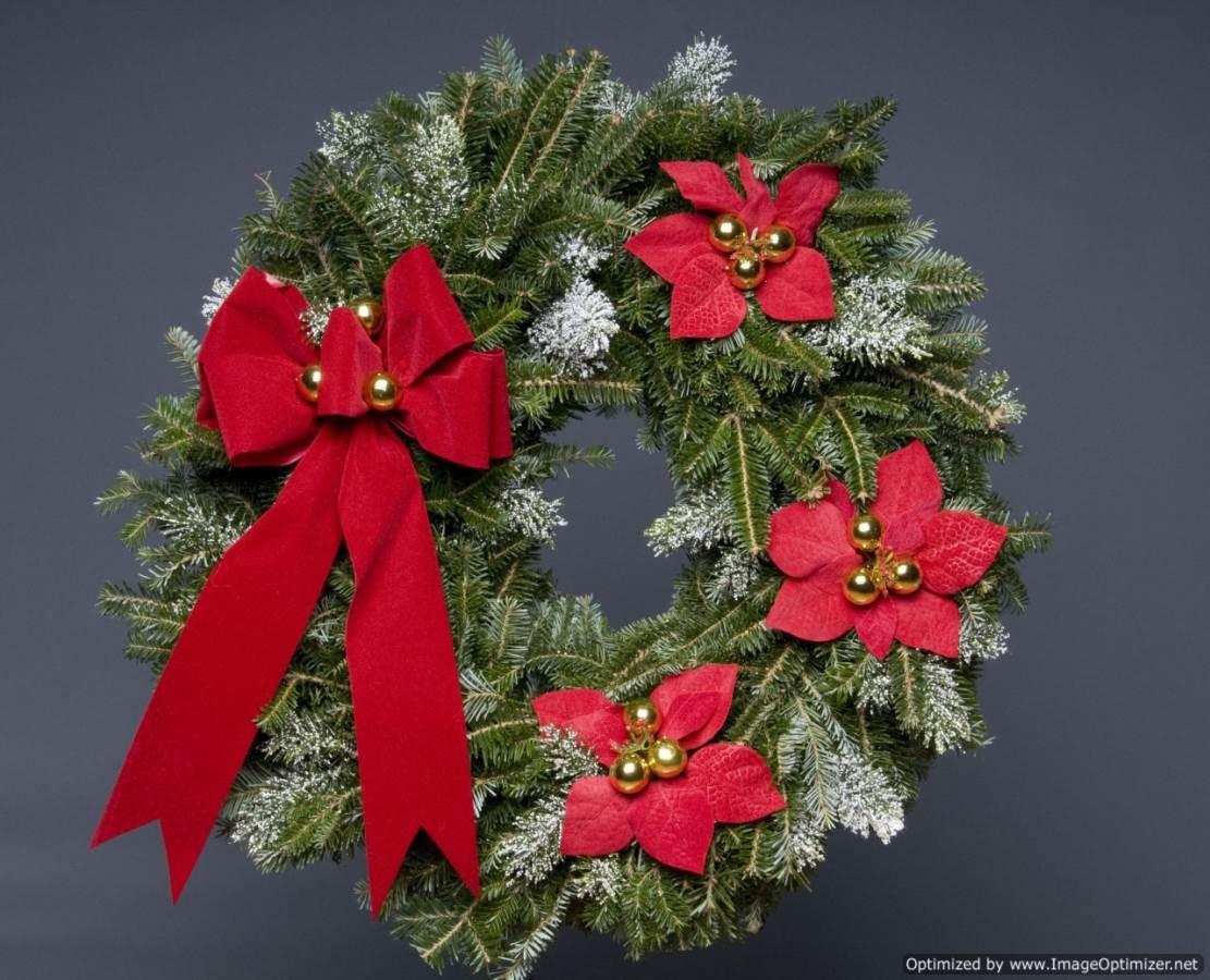 Poinsettia Noel