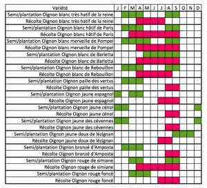 calendrier de semis et récolte des différentes variétés d'oignons
