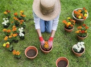choisir ses gants pour jardiner