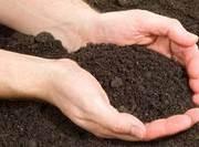 sol argileux terre dans les mains