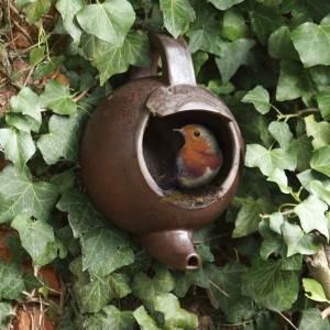 nichoir à oiseaux en forme de bouilloire