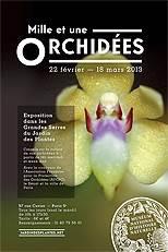 Affiche événement Orchidees 2013