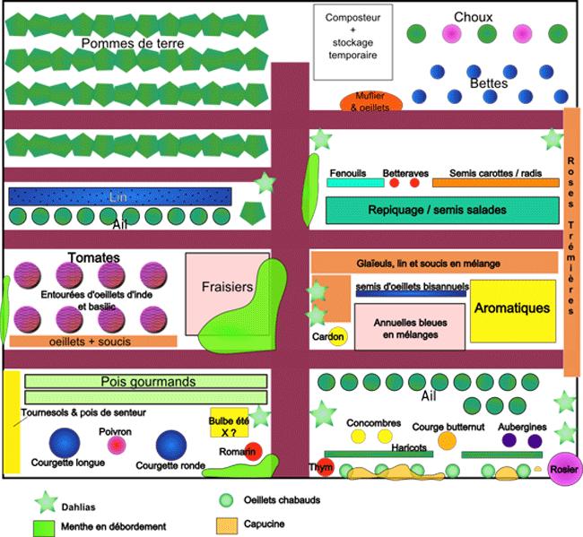 exemples de plans de potagers : les légumes et leur place dans le potager