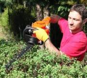 paysagiste au travail dans le jardin