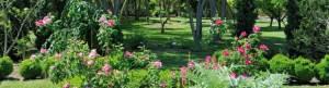 jardin aux plantes parfumees 1er mai 2013