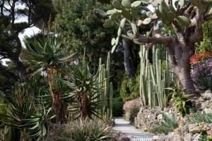 jardin exotique de la Villa Ephrussi de Rothschild