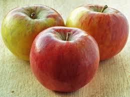 Pommes Red Falstaff- astuces pour tailler son pommier