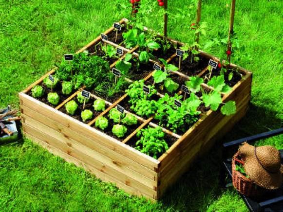 5 étapes pour installer votre carré potager
