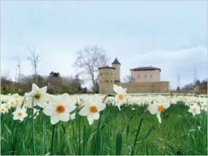 château Saint-Bernard prix du jardin de l'année 2013