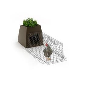 poulailler coq home en vente sur hortik.com