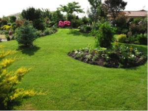 joli jardin paysagiste
