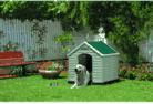 niche à chien avec chien dans le jardin