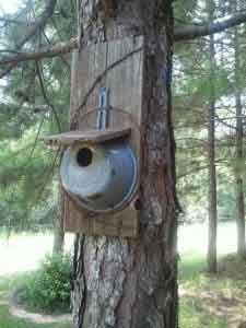 nichoir à oiseau avec vieille casserole