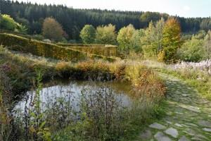 automne au jardin de berchigranges