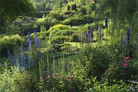 printemps au jardin berchigranges Vosges