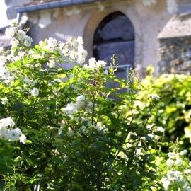 jardins viels maisons aisne
