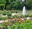 scene au jardin 2