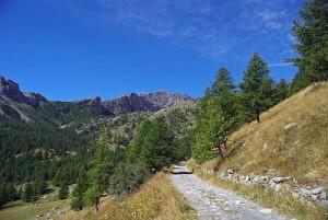 Sentier ou piste dans le bas de Fontanalbe en été. Au fond, le Mont Bégo.